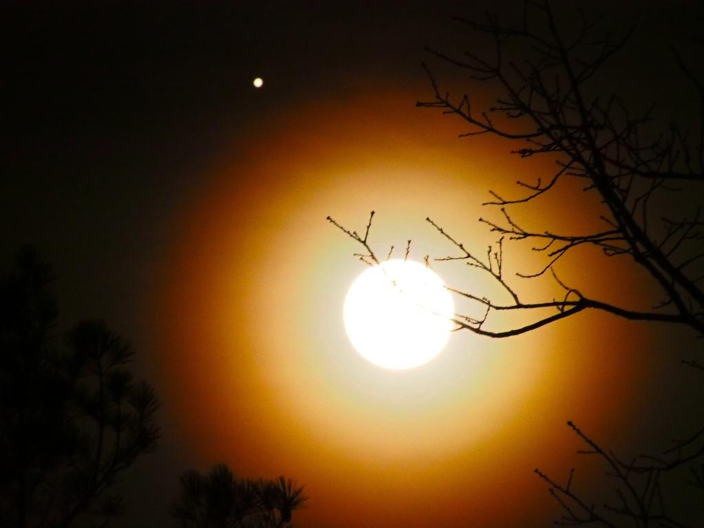 beaver_moon